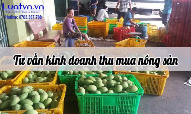 Tư vấn Kinh doanh thu mua nông sản