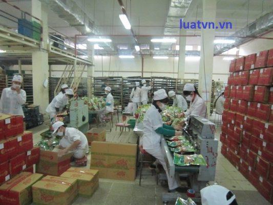 Thành lập công ty sản xuất bánh kẹo