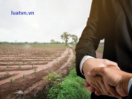 Thủ tục chuyển đổi mục đích sử dụng đất nông nghiệp sang phi nông nghiệp