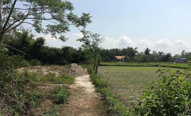 Quy trình thủ tục xin cấp sổ đỏ cho đất khai hoang theo quy định