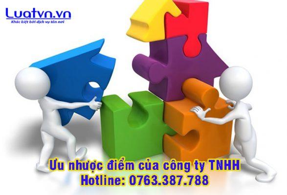 Ưu nhược điểm của công ty TNHH