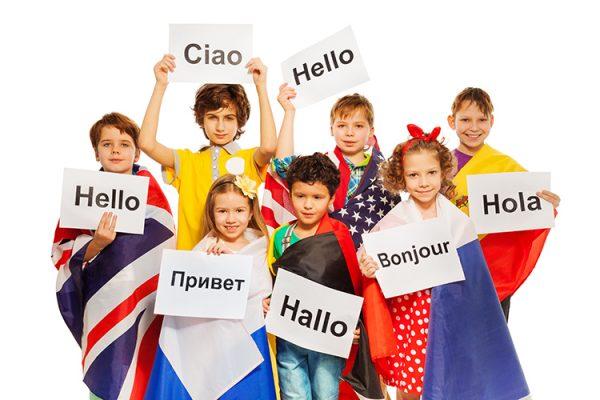 Nhiệm vụ và quyền hạn của trung tâm ngoại ngữ tin học