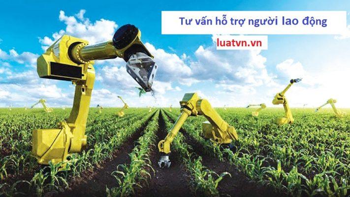 Đơn hàng nông nghiệp lương cao