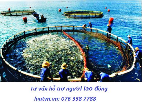 Đơn hàng nuôi trồng thủy sản