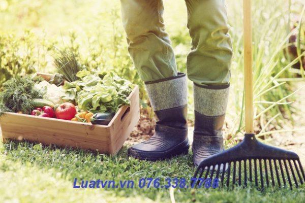 Khi nào kiểm tra an toàn vệ sinh thực phẩm