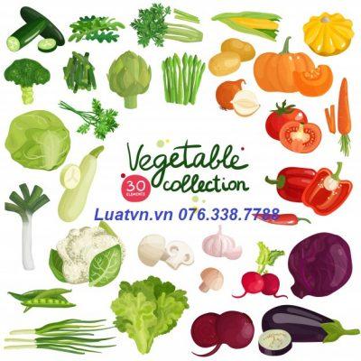 Sản xuất thực phẩm đảm bảo vệ sinh ATTP