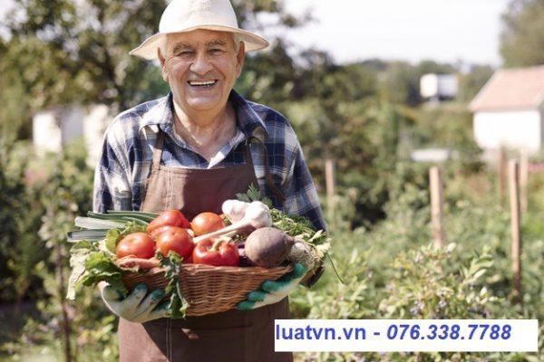 Thực phẩm đảm bảo vệ sinh ATTP